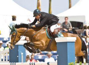 Royal Windsor Horse Show - Horsebox finance