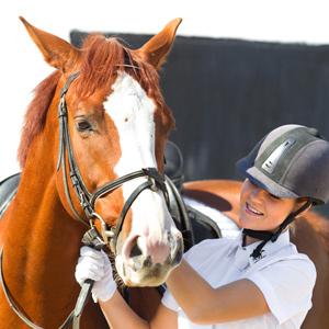 horse-finance